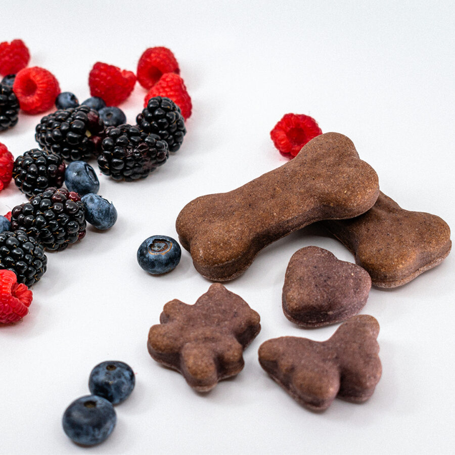Bountiful Berry Mini-Treats